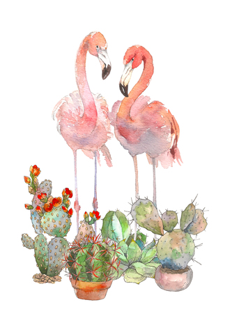 Two flamingo with succulents isolated on white background. Watercolor hand drawn illustration. Rastra.
