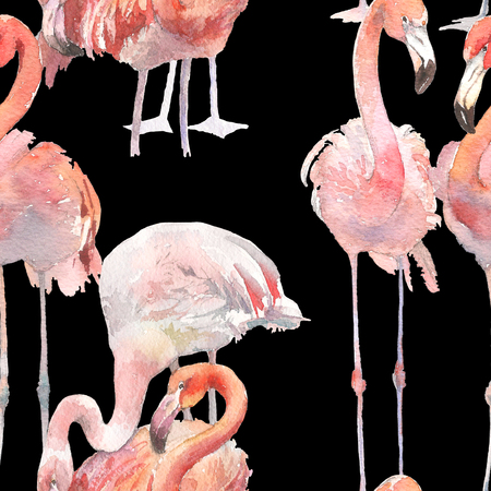 Watercolor seamless pattern with exotic flamingos on black background. Summer decoration print for wrapping, wallpaper, fabric