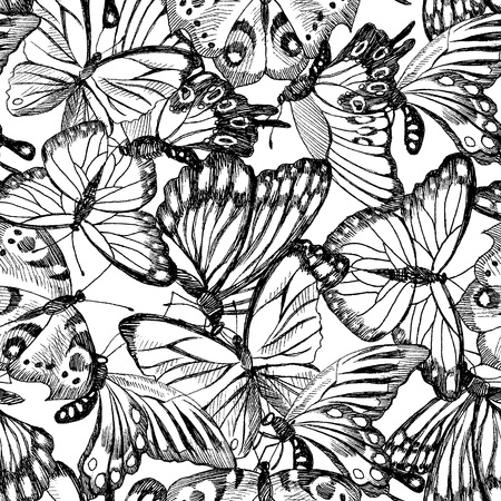 Collection of Hand Drawn black silhouette butterflies Vintage watercolor botanical illustration