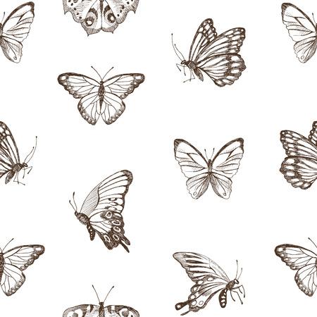 Sammlung von Hand gezeichnete braune Silhouette Schmetterlinge Vintage Aquarell botanische Illustration Vektorgrafik