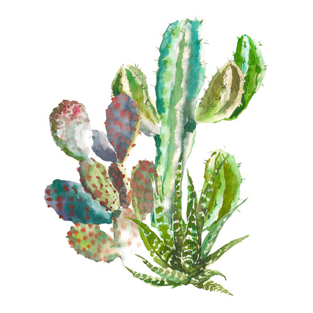 Set of watercolor cactus, succulents and floral elements. Vintage watercolor botanical illustration for textile, print, invitation, party. Tropical concept. Stock Photo