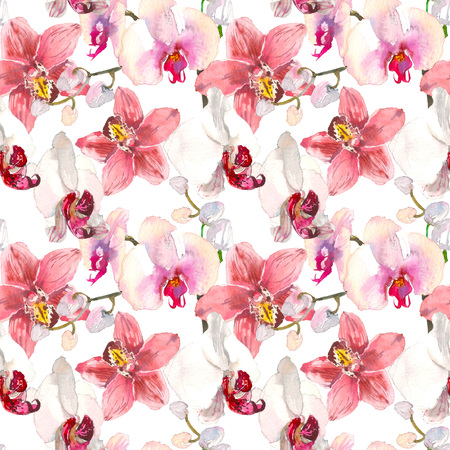 Tropical seamless pattern with pink orchids flowers. Tropic floral wallpaper isolated on white background. Exotic textile print. Watercolor hand drawn illustration