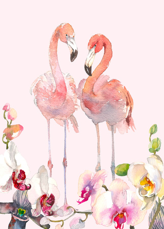 Hand drawn watercolor illustration of tender orchids branch border and two flamingo background. Tropical illustration of Hawaii, Thailand, Asia, Florida. Back for your design. 스톡 콘텐츠