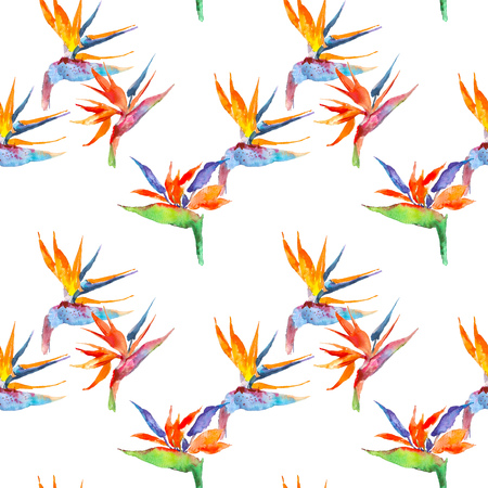 Seamless pattern of strelitzia tropical plant. Watercolor hand drawn flowers and leaves. Design for invitation, wedding or greeting cards, clothes, print. Flower concept. Tropical concept Zdjęcie Seryjne