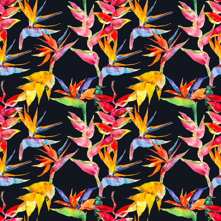 Trendy simple floral pattern. Flowers of calathea, strelitzia. Tropical jungle print. Repeating background for textile, wallpaper, surface, summer decoration, posters, invitation. Tropical concept. Flower concept. Watercolor