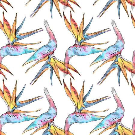 Seamless pattern of strelitzia tropical plant. Watercolor hand drawn flowers and leaves. Design for invitation, wedding or greeting cards, clothes, print. Flower concept. Tropical concept Banco de Imagens