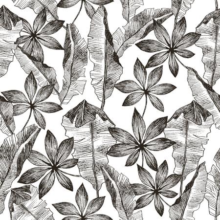 Texture de modèle de vecteur botanique exotique tropique dessiné main transparente avec palmier jungle forêt tropicale feuilles banane. Illustration en noir et blanc.