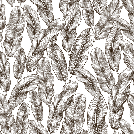 Seamless hand drawn tropic exotic botanical vector pattern texture with rainforest jungle tree palm leaves banana. Black and white illustration.