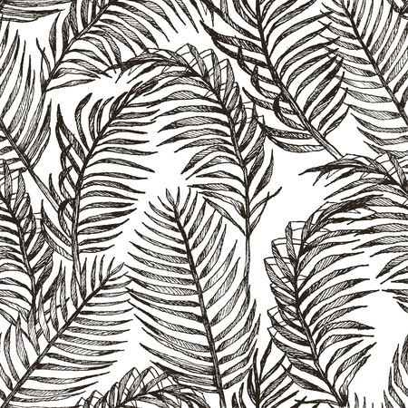 Seamless hand drawn tropic exotic botanical vector pattern texture with rainforest jungle tree palm leaves. Black and white illustration.