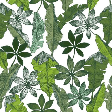 Naadloze hand getekend tropische exotische botanische vector patroon textuur met regenwoud jungle boom palmbladeren banaan.