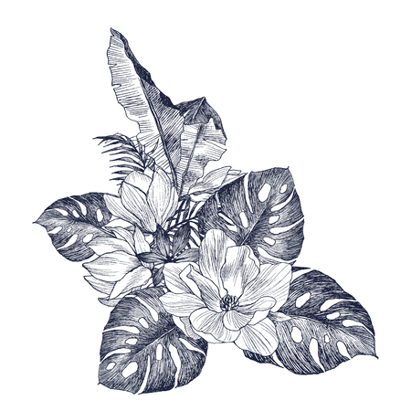 Magnolia, monstera plants. Exotics. Vintage vector botanical illustration. Black and white