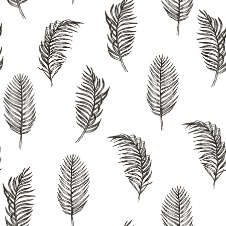 Seamless hand drawn tropic exotic botanical vector pattern texture with rainforest jungle tree palm leaves. Black and white illustration.  イラスト・ベクター素材