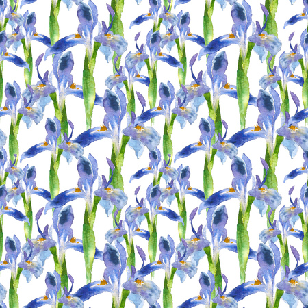 Seamless pattern of watercolor blue iris flower. Hand drawn illustration in sketch style for greeting cards, invitations, and other printing projects.