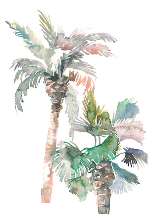 Watercolor two palms, hand drawn illustration for your design. Isolated on white background