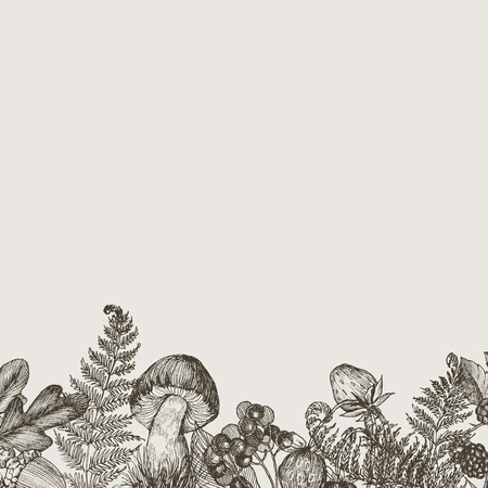 Forest plants border with mushrooms, fern, berries. High detailed hand drawn background. Vector design. Forest nature. Place for text