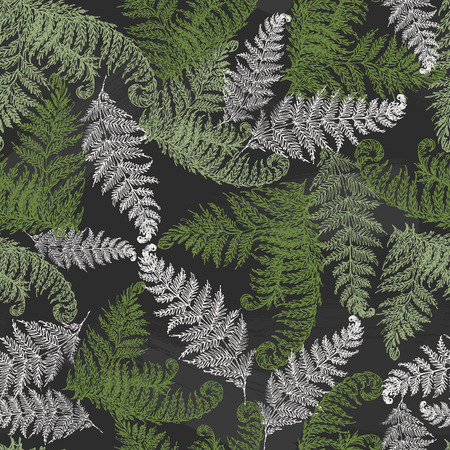 Fern herbs, tropical forest plant leaves seamless vector wrapping paper. Modern herbal pattern. Bracken foliage, forest exotic leaves tropical fern grass herb seamless fabric background.