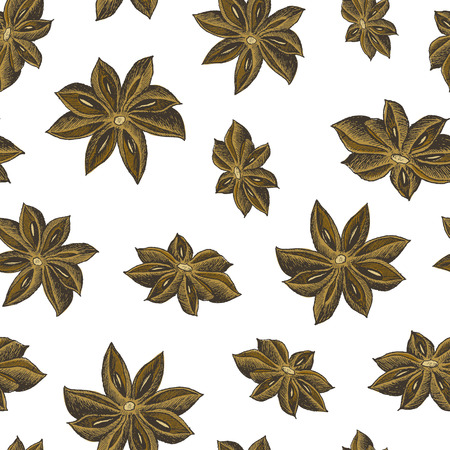 Hand drawn seamless pattern with brown anise stars on the white background. Vector