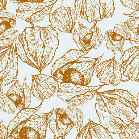 Seamless pattern with hand-drawn Physalis, vector illustration in vintage style on white background. Ilustracja