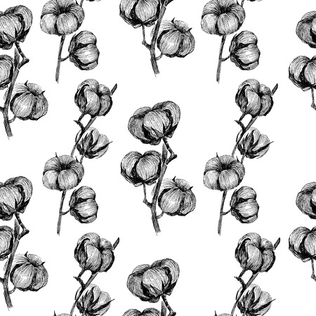 Vintage vector bouquet of cotton flowers. Botanical illustrations. Seamless pattern.