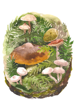 Watercolor natural compositions of fern, leaves, mushrooms and branches. Watercolor botanical composition of the forest theme. Hand drawn watercolor