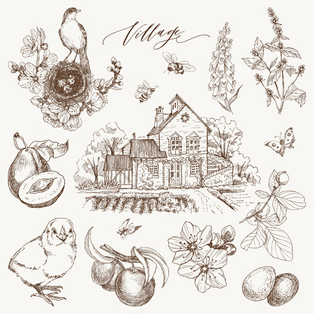 Vintage style of village details and objects. Detailed illustration engraving style. For cards, typography Zdjęcie Seryjne - 127315399