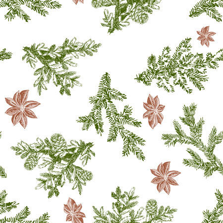 Vector seamless pattern with pine branches. Forest repeating texture. Floral background.