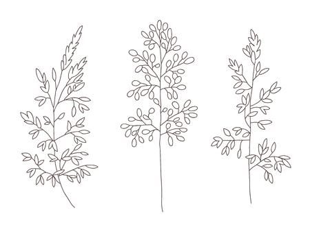Oggetti floreali di vettore. Erbe e fiori selvatici. Stile di incisione dell'illustrazione botanica. Vettoriali