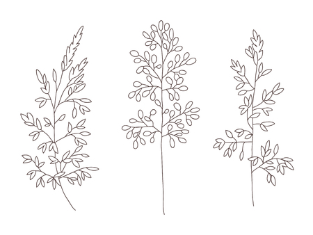 Vector floral objects. Herbs and wild flowers. Botanical Illustration engraving style. 向量圖像