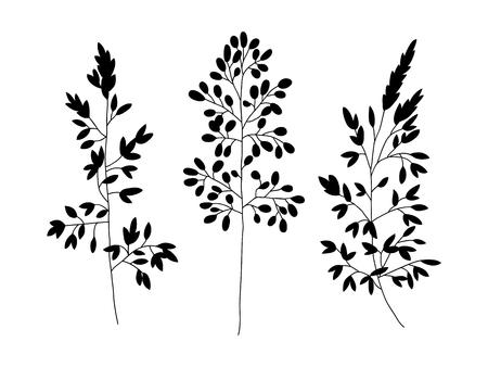 Objetos florales vectoriales. Hierbas y flores silvestres. Estilo de grabado de ilustración botánica. Ilustración de vector