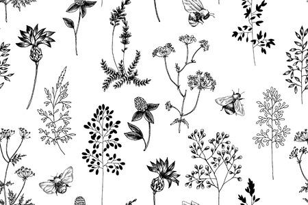 Fleur épanouie. Ensemble de collection. Branches de fleurs botaniques dessinées à la main sur fond blanc. Illustration gravée.