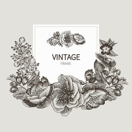 Beautiful card with a square frame with wreath of different plants of vintage garden and forest. Black and white frame of the roses, peones and berries on a creme background. Vector illustration Ilustracja