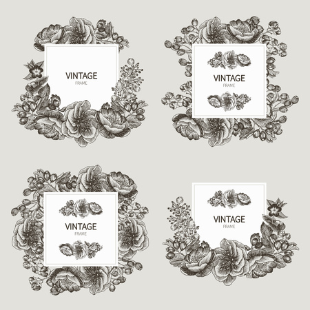 Beautiful card with a square frame with wreath of different plants of vintage garden and forest set. Black and white frame of the roses, peones and berries on a creme background. Vector illustration Banco de Imagens