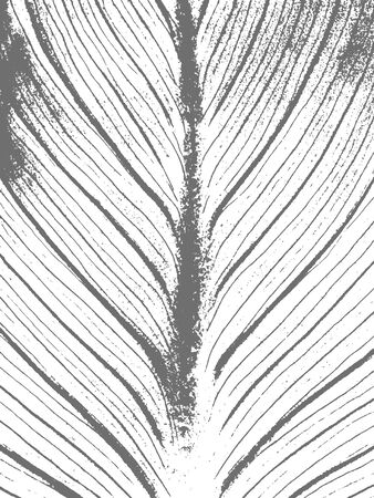 Grunge floral texture in black and white. Leaf textured background. Vector template. Distress vector texture.