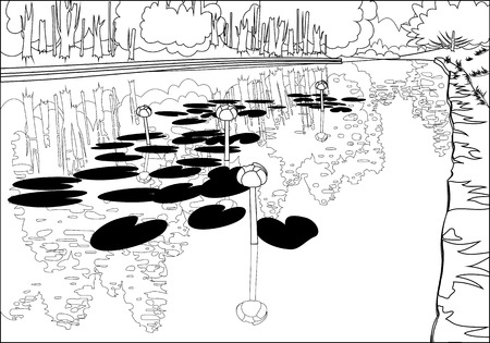 dense: Lilies in a pond on a background of dense forest  Illustration