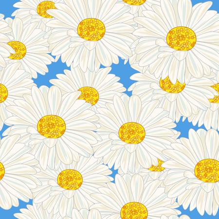 Witte margrieten op een blauwe achtergrond. Vector illustratie.