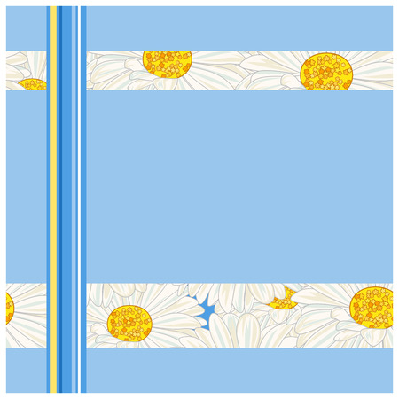 white daisy: White daisy on a blue frame.  Illustration