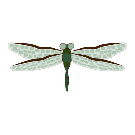dragonfly on white background abstract sign pattern fashion