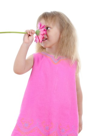 girl in a pink dress sniffing a flower. Isolated on white background photo