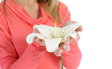 Lily in female hands. Isolated on white background Stock Photo - 7539575
