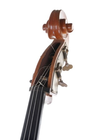 Image headstock contrabass. Isolated on white background photo
