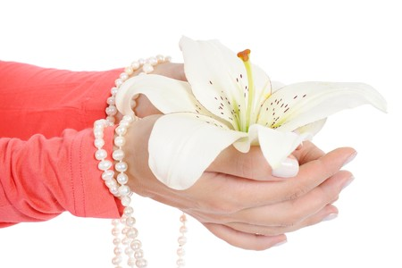 flower in a beautiful female palms. Isolated on white background Stock Photo - 7634289