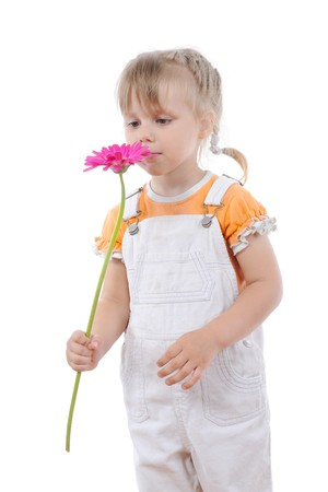Little girl sniffs a flower. Isolated on white background photo