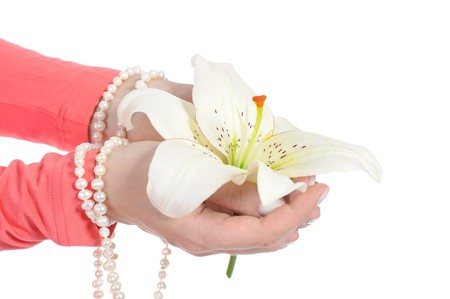 flower in a beautiful female palms. Isolated on white background photo