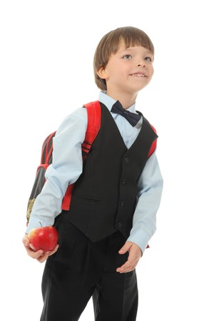 Schoolboy with a briefcase behind. Isolated on white background Stock Photo - 8172691