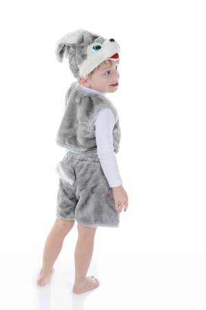 little boy in costumes hare. Isolated on white background photo