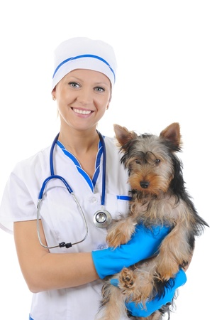 Veterinary with a dog for a review photo