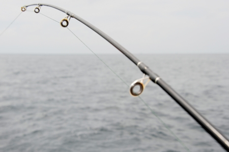 anglers: Spinning close-up