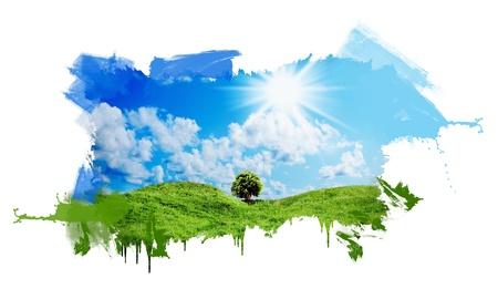 緑の草晴れた青空