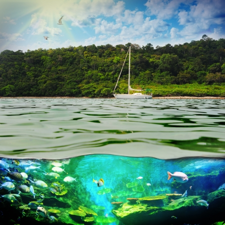 mediterranean forest: Yacht in the open sea