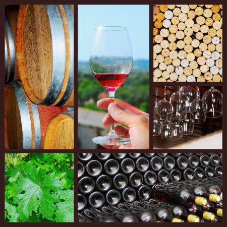 Vino collage photo